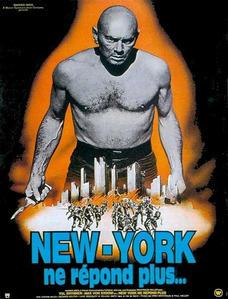 New-York-ne-r-pond-plus-Copie-Copie-Copie